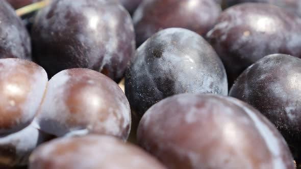 Thumbnail for Shallow DOF pile of plum fruit from genus Prunus 4K footage