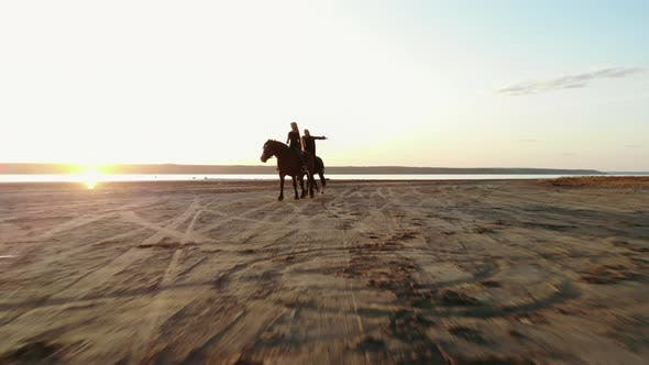 Thumbnail for Drone Aerial View of Woman Riding Horses on Open Coast. Stallion Training