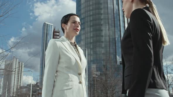 Thumbnail for Female Business Partners Shaking Hands