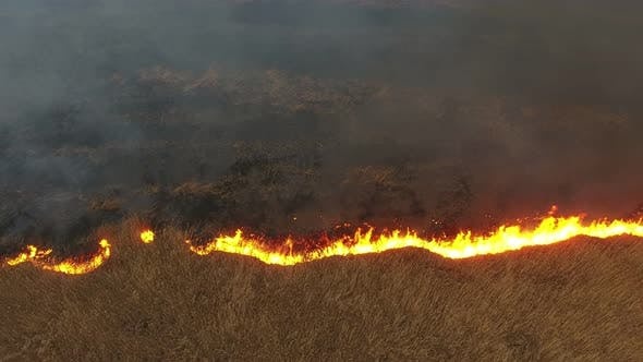 Thumbnail for Aerial Shot of Burning Cane and Reed Marshes in the Dnipro River Basin in Spring