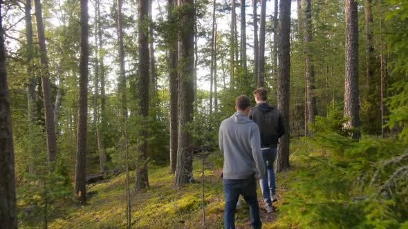 Young men hiking through a forest near a lake.