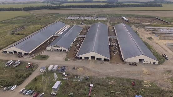 Luftaufnahme der Milchfarm