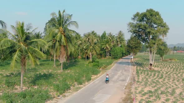 Thumbnail for Tourists on Motorbike Ride Along Road Among Palm Tree Forest