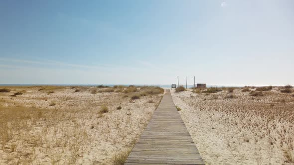 Walking on Wooden Footpath through Dunes