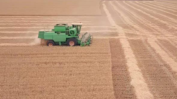 Thumbnail for Combine Moves on a Wheat Field