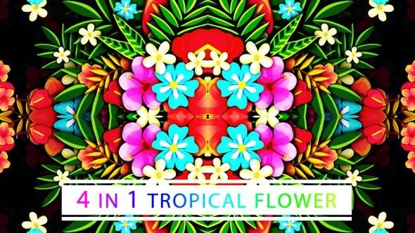 Thumbnail for Tropical Flower