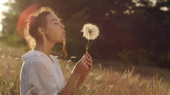Cover Image for Beautiful Young Woman Blows Dandelion in a Wheat Field in the Summer Sunset. Beauty and Summer