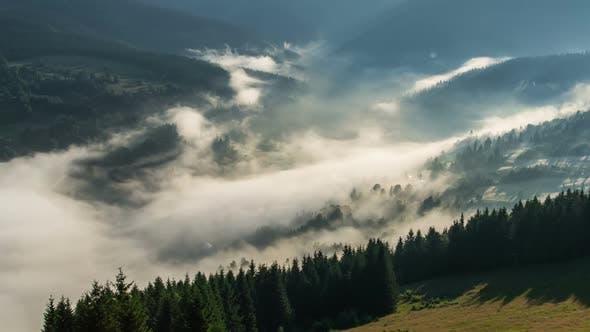 Thumbnail for Mystic Foggy Morning