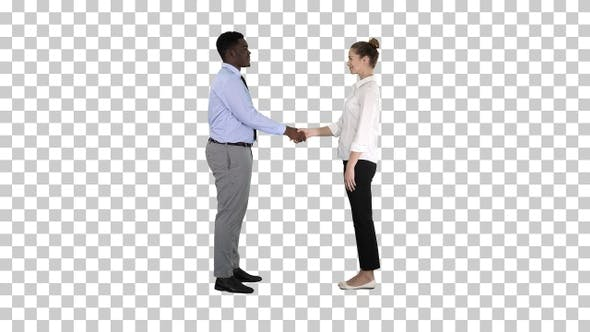 Thumbnail for Professional business people handshaking, Alpha Channel