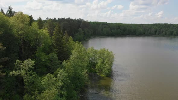 Landscape of a Lake in the Middle of the Coniferous Forest - Green Nature