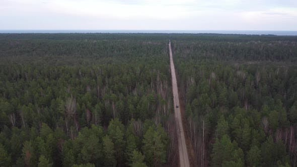 Thumbnail for Drone Footage of Car driving trough long forest road