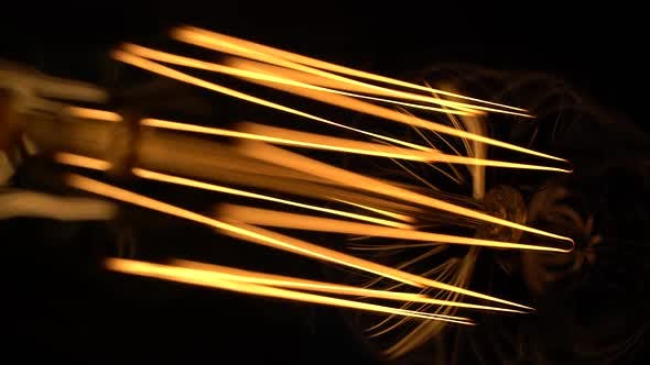 Ornate Curves of Incandescent Tungsten