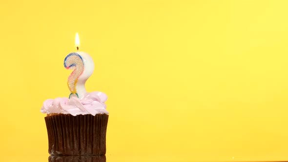 Birthday Cupcake with Candle Question Mark. - product preview 0