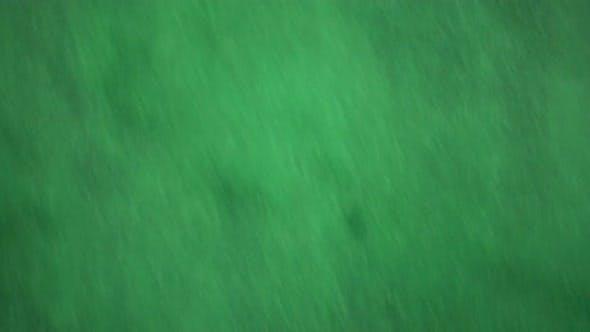 Thumbnail for Green Powder