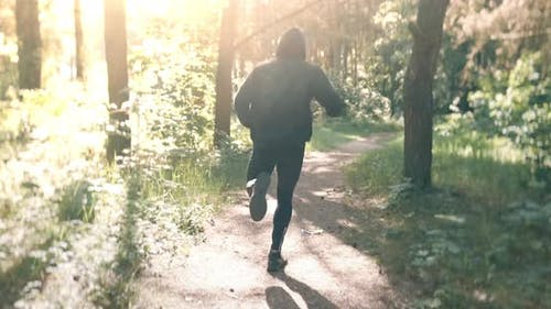 Slow Motion Shot of Man Running Through Pine Forest on Path in Woods. Runner Training Fitness and