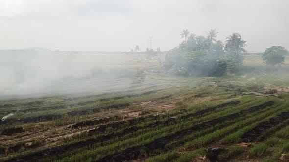 Open fire cause environmental catastrophe
