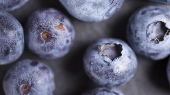 Thumbnail for Ripe blueberries