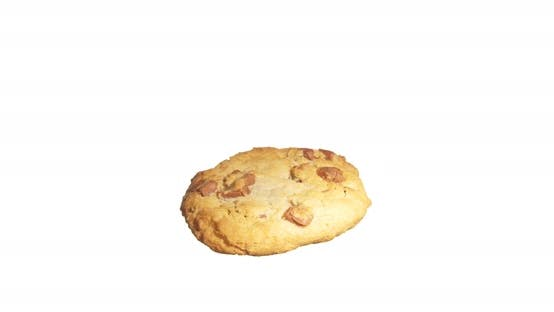 Thumbnail for Cookie Biscuit