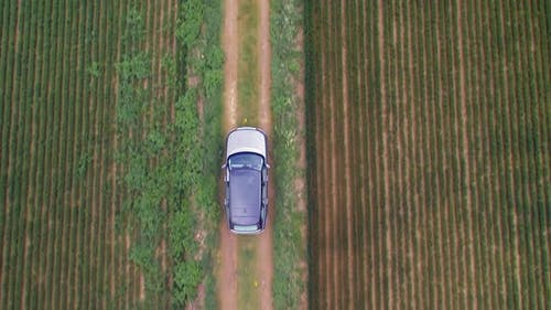 Bird's Eye View of a Luxury SUV Driving Off Road