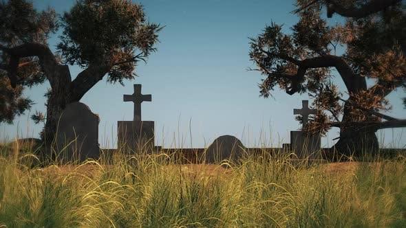 Thumbnail for Halloween Graveyard