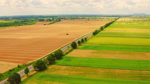 Top View on the Highway in Countryside