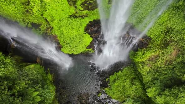 Thumbnail for Jungle Rainforest at the Argentina Side of Iguazu Waterfall. Aerial View