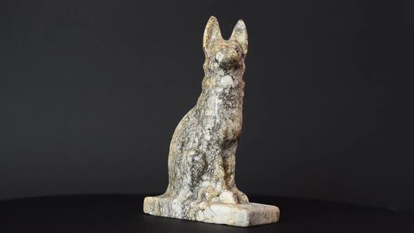 Thumbnail for Dog 29