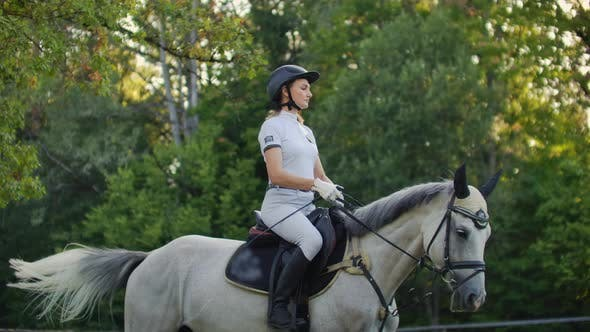 Thumbnail for Horseback Riding From Women on Her Horse