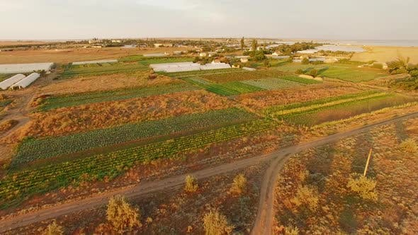 Territory Of Greenhouses On Agricultural Fields