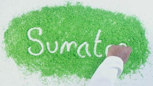 Hand Writes On Green Sumatra