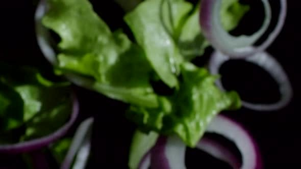 Thumbnail for Red Onion Rings and Salad Leaves