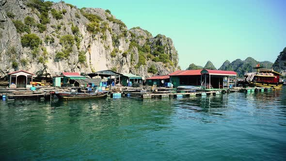 Thumbnail for Floating Fishing Village In The Ha Long Bay. Cat Ba Island, Vietnam.