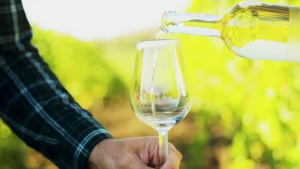 Thumbnail for Gießen Weißwein in ein Glas auf einem Weinberg Hintergrund