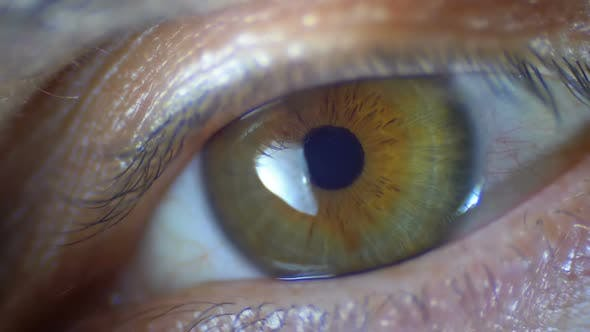 Cover Image for Macro Close-up Male Human Eye Blinking. Slow Motion