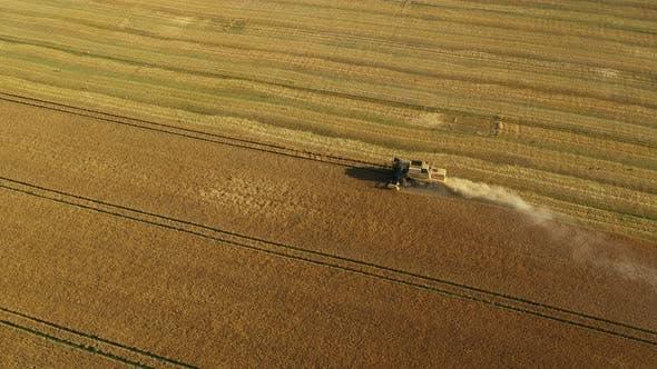 Luftaufnahme Mähdrescher Ernte Weizen