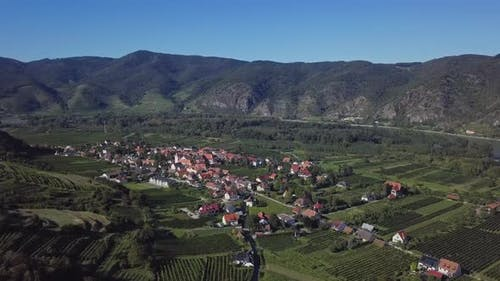 Aerial of Vineyards in Wachau, Austria