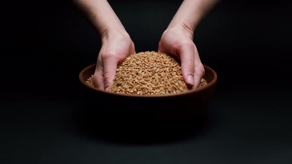 Taking Buckwheat in Hands From Bowl and Pouring on Black Background