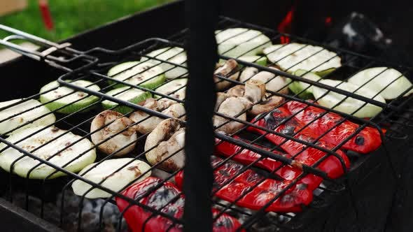 BBQ Family Picnic Barbecue Vegetables Grilling in the Nature Park Outdoor