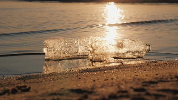 Cover Image for Two Plastic Bottles Float in the Water Near the Shore
