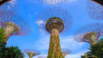 Time-lapse of Gardens by the bay with blue sky at Singapore