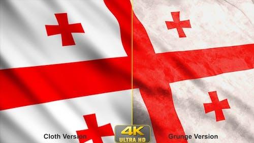 Georgia Flags
