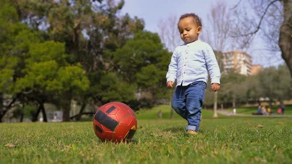 Thumbnail for Little Mixed-race Boy Playing with Red Ball on Grass in Park
