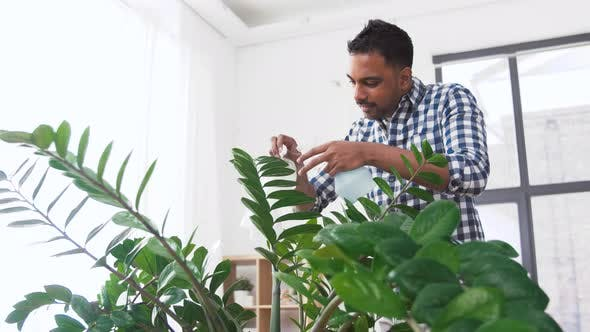 Thumbnail for Indian Man Cleaning Houseplant at Home