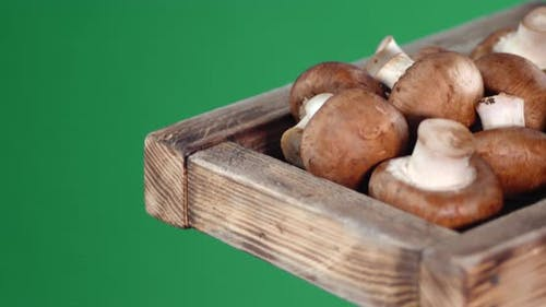 Fragrant Mushrooms on a Wooden Tray.