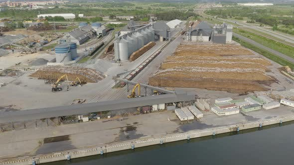 Thumbnail for Timber Logs Cargo laying at Sea Port Warehouse