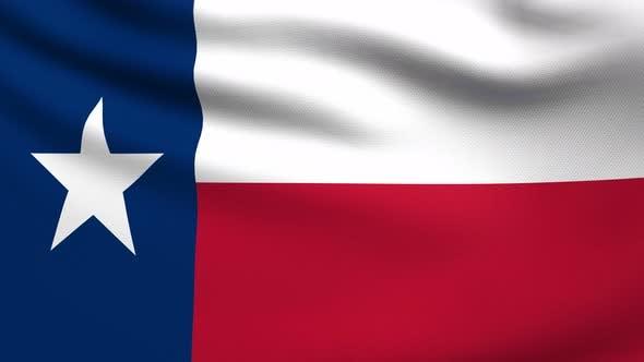 Texas Flag 4K
