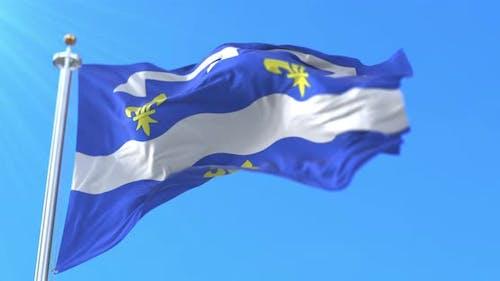 Flag of Loiret in France