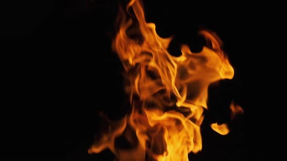 Bonfire Burning at Night. Flames of Campfire at Nature. Slow Motion 240 Fps