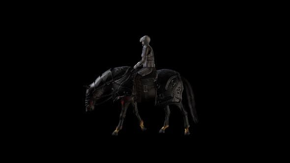 Thumbnail for Cavalry and Medieval War Horse
