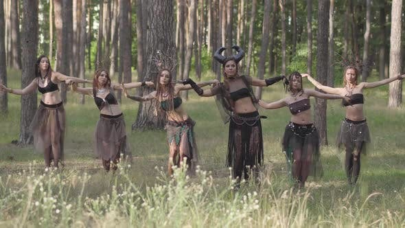 Forest Dwellers Dancing in the Woods